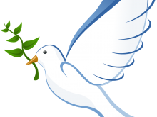Dove Peace Flying Freedom