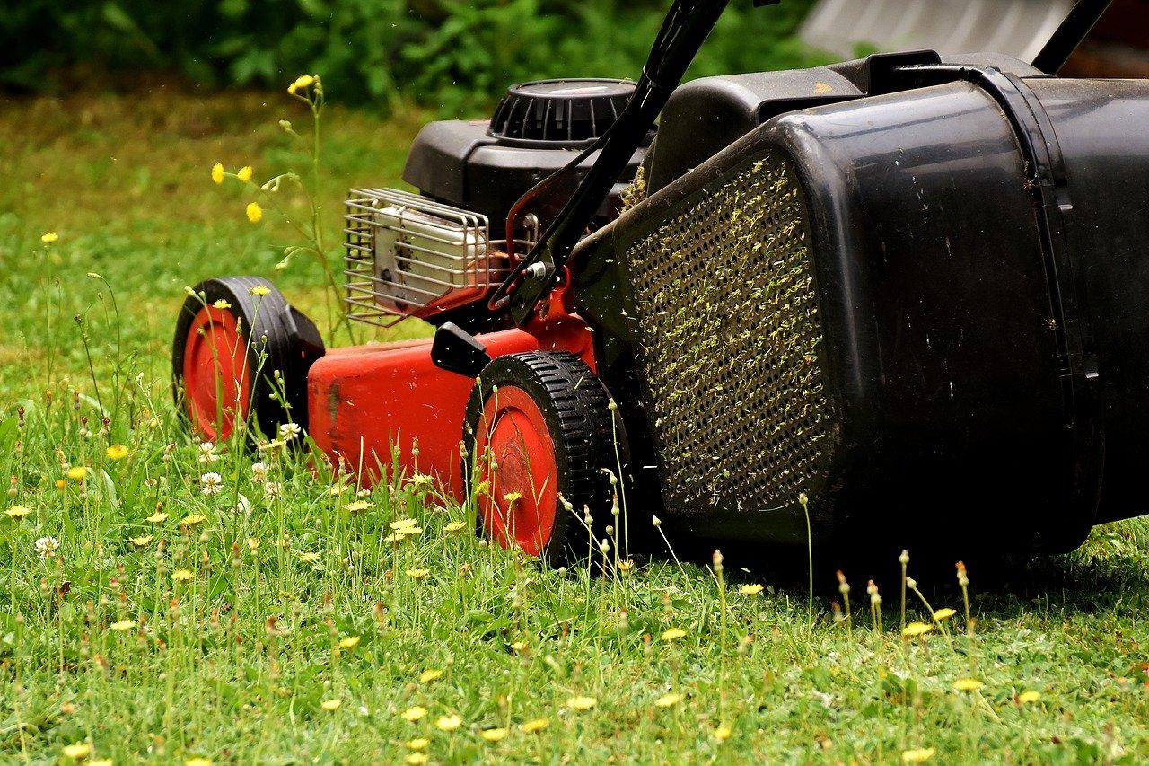 Lawn Mower Mow Lawn Mowing Green  - Alexas_Fotos / Pixabay