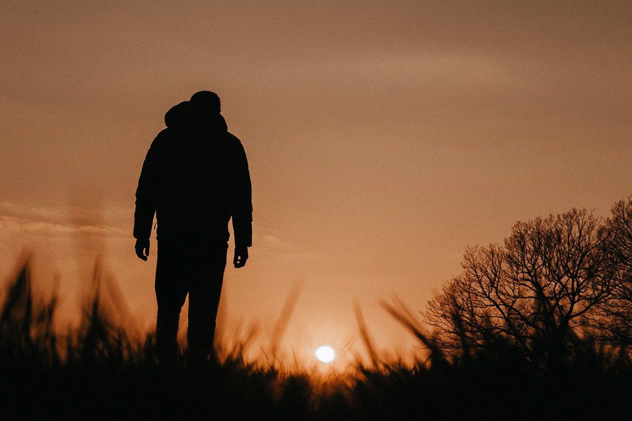 Sunset Walk Walking Path Dog  - gioiremadze / Pixabay