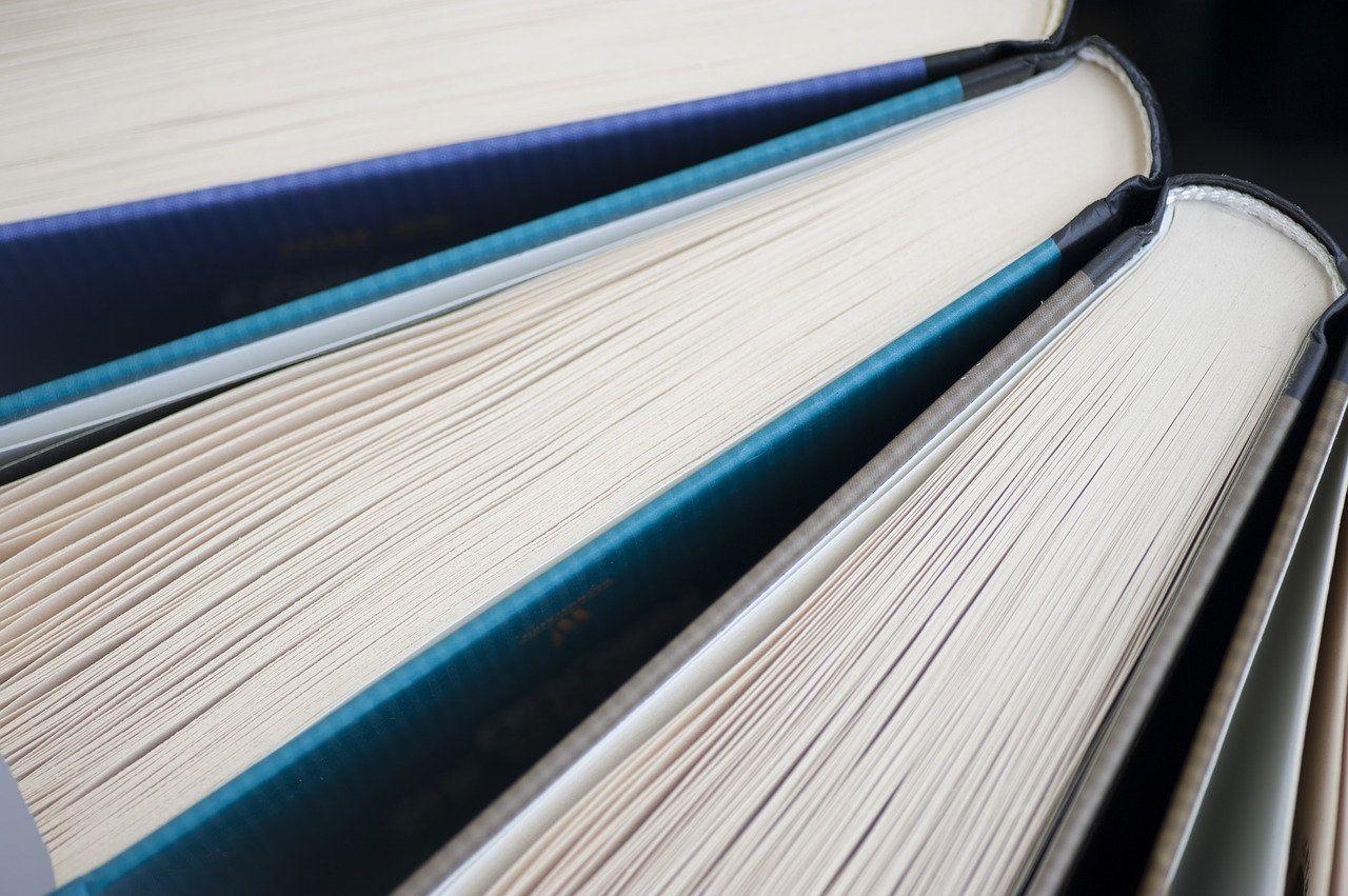 Books Literature Book Read  - arembowski / Pixabay